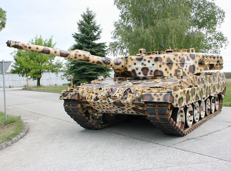 leopardine 1